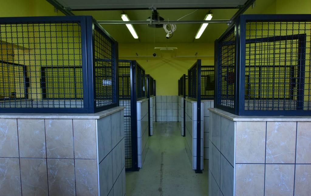 Innenräume im Tierheim