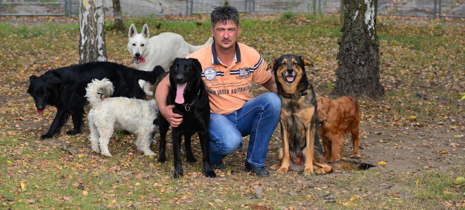 Tierheim Frankfurt Oder Hunde